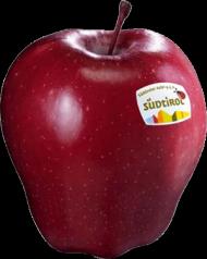 Beste Dating-Apps für Apfel Fragen vor der Datierung